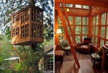 cabin / by Sheila Cristilli Jarvis