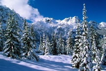 Invierno / Paisajes invernales