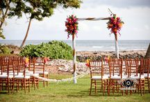 Canopies & Arches / Wedding Canopies, Arches and Floral Decor