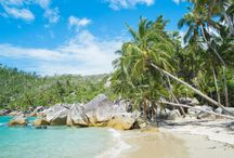 Bedarra Island QLD