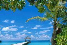 Beachy Love...