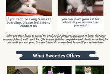 Sweeti Cat House