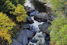 Maine / by Rosanne C