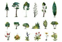 Plants / Interesting, and mostly stylized, plats as inspiration for games.