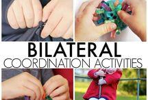 Bi-lateral co-ordination activities
