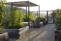 Veggie Garden shade ideas