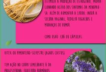 plantas menopausa