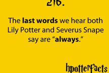 potter watch / by Breanna Hopkins