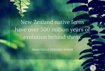 First Light Flower Essences of New Zealand® / Quotes by Co-creator of First Light Flower Essences of New Zealand® Franchelle Ofsoskyé-Wyber.
