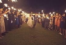 Wedding / by Holly Murphy