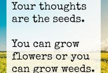 Seeds of Wisdom / Quotes involving farming, seed, and the great outdoors.