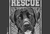 Dogs: Rescue