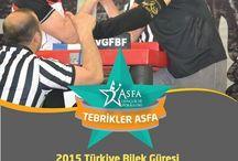2015 Türkiye Bilek Güreşi Avrupa Seçmeleri Şampiyonası