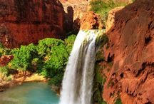 Havasupai Falls / by Bradford Family