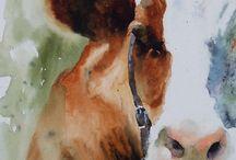 kjyder / Ku -cows