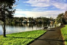 GORGE WATERWAY AND LIVING NEARBY / VIEWS OF THE GORGE WATERWAY AND LIVING IN THIS GREAT NEIGHBOURHOOD OF VICTORIA BC #victoriabc #gorgewaterway