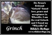 Critter Wisdom / Rikki's Refuge, Rapidan, Virginia, www.rikkisrefuge.org