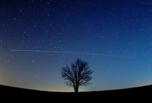 Stars / by Shana Puckett Schadler