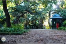 VISITAR   Jardim Botânico