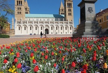 Magyarország  Pécs