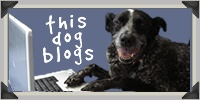 This Dog Blogs / Ruby the dog blogs on MyUntangledlife.com. Ruby shares his collection of haikus, reviews, videos, and other musings.