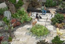 Yard and Garden / by Gillian C.