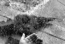 Sea Rain and Water