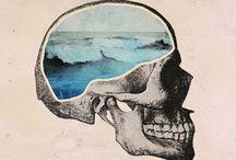 Skulls / what inside really matter ,hehehe