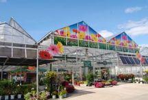 Entrances @ Garden Centers / Entrance retail ideas from independent garden centers.
