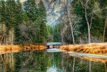 California / by Migeys
