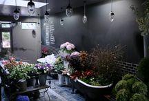 Florist shop ideas