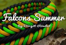 Falcon summer