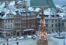Winter / Zimowa Warsaw