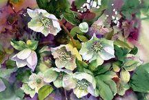 Ann Mortimer flowers watercolor/ цветы акварель
