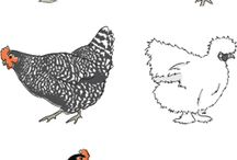 *Chicken  Coops / by Jackie Leavitt Graña