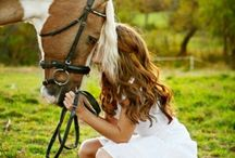 Pictures with Horses