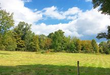 Fall on the Farm / Our 1790's farm and barn is available to rent by the weekend for your rustic wedding location. Located in beautiful Medusa, NY 12120.