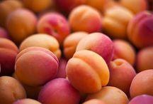 Orangerie...