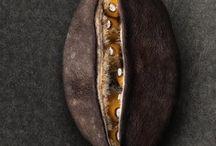 Seeds.....