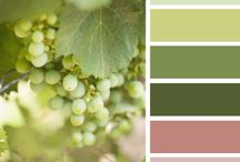Color Palettes / by Foster's Beauties