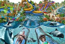 Aquatica Orlando / Aquatica, SeaWorld's Water Park