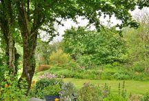 Pretty gardens