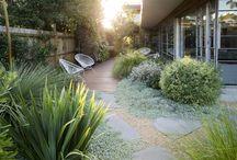 native gardens australia