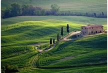 Tuscan Splendour