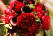 Radiantly Red  / Parties, weddings and more decked out in bright beautiful shades of red.