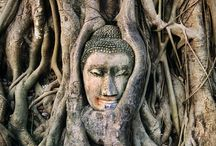 Thailand / Ideas for my vacation to Thailand / by Susan Miller