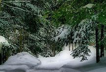 Winter~♡