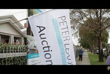 Videos - Auctions/Market Reports