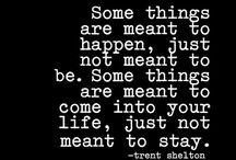 Quotes Trent shelton