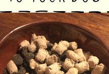 Healthy Dog Foods / Pins about healthy dog foods for your dog.